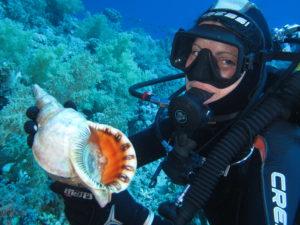 Sub mare